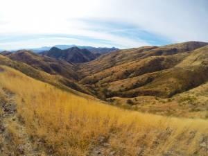 Pretty landscape!