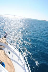 Red sea boat trip